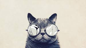 hipster wallpaper backgrounds. Exellent Wallpaper Hipster Cat Tumblr Backgrounds Inside Wallpaper A