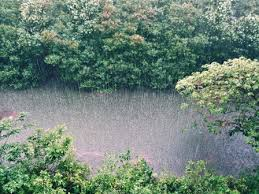 essay on rainy season in english for class to class  rainy season comes after the summertime at this time dark clouds cover the sky it rains heavily thunder lightning the rivers and ponds become full