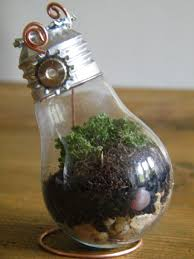 Marieke Elizabeth Design DIY Tutorial: Recycling Old Light Bulbs to Create  Beautiful Mini Terrariums - YouTube