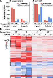 Regulatory Divergence In Wound Responsive Gene Expression Between