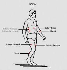 Pressure Points Face Self Defense Nerve Points Self Defense