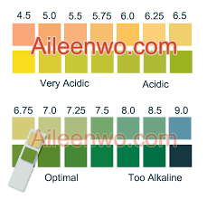 Color Chart Urine Test Strips Ph Test Strip Color Chart Malaysia Aileenwo Com