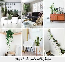 When I am on Instagram and I am scrolling down the list and up comes a home  with a bit of greenery I always double click. Plants always light up a room.