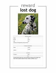 Lost Pet Flyer Maker Lost pet flyer Office Templates 2