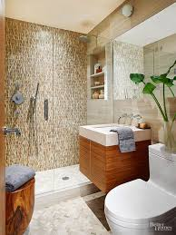 Walk In Shower Bathroom Designs