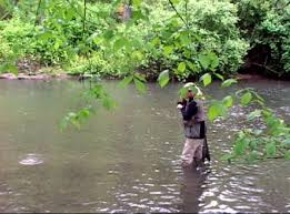 Fly Fishing On Spring Creek In Pennsylvania