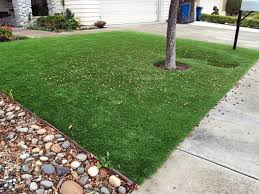 artificial turf yard. Artificial Grass Naco, Arizona Landscape Design, Small Front Yard Landscaping Turf