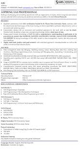 Sas Professional Professional Resume Samples