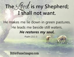 The Lord Is My Shepherd Bible Quote Bible Verse Images Fascinating Bible Inspirational Quotes About Life