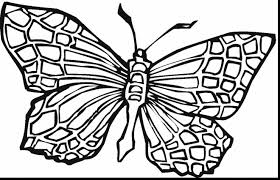 Small Picture superb printable coloring page butterfly colouring with color