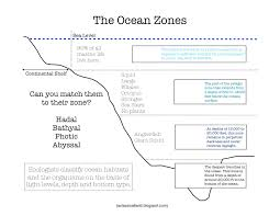 habitat and niche activity sheet answers heres a nice printable on the ocean zones answer key can be found