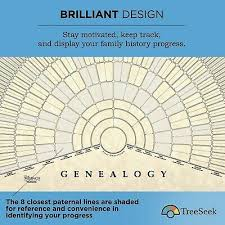 Treeseek Genealogy Fan Wall Chart Large Blank Fillable