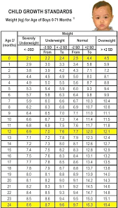20 Month Old Weight Chart Prototypical Age Weight Height Table Weight Chart Of Child
