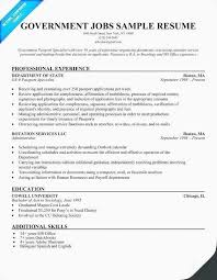 Current Resume Examples Awesome Current Resume Format 28 Awesome Resume Examples For Jobs With