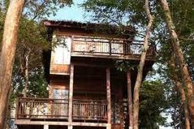 The Arts Of The Treehouse  Privacy U0026 Proximity To NatureTreehouse Koh Phangan
