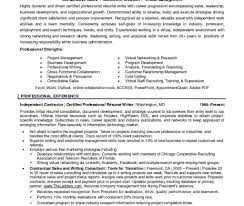 Resume Professional Writers Reviews Job Resume Professional Resumes Service Examples Free Writers 4
