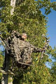 so what are the advantages of using stands tree stand