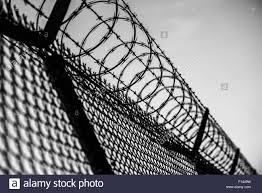 barbed wire fence prison. Interesting Prison Prison Fence In Black And White Barbed Wire Closeup For R