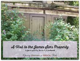 Sims – Page 3 – Opening Doors in Brick Walls