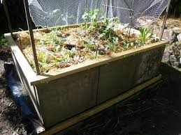 picture of making a raised garden bed from concrete pavers