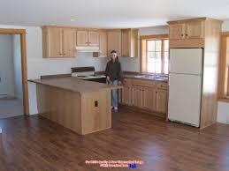 wall mount oak kitchen cabinet with doors over u shape kitchen countertop also dark pergo floor