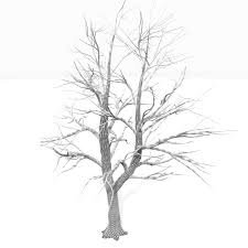 Small Picture Bare Tree Coloring Pages Coloring Pages Kids