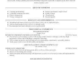 Sample Executive Summary For Resume Resume Executive Summary Template Cover Letter Examples