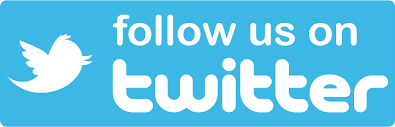 Image result for follow twitter icon