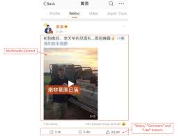 The Ultimate Guide to Sina Weibo: More Than Just Chinese Twitter!