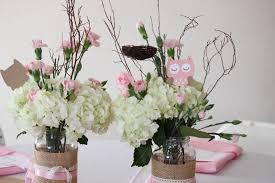 Owl Baby Shower Decorations Girl Babyshower  Baby Shower DIYOwl Baby Shower Decor