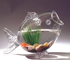 Decorative Glass Fish Bowls Fish Shaped Glass Fish Bowl Aquarium Air plant by PartySpin 1