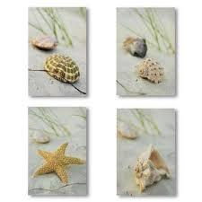 beach seashells conch starfish wall art 4 prints decor on starfish wall art amazon with amazon beach seashells conch starfish wall art 4 prints decor