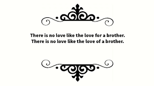65 Best Brother Quotes