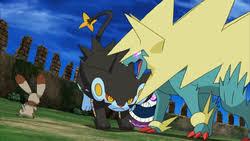 Pokemon Electrike Evolution Chart