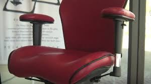 lifeform chairs at a glance