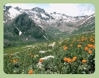 Национальные парки и Заповедники Казахстана Заповедники Казахстана Заповедники Казахстана