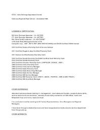 lisa resume