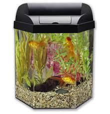 aquarium office. 4 Reasons To Put An Aquarium In Your Office
