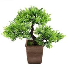 office bonsai. Plain Office GTIDEA 106 Inch Artificial Cedar Bonsai Trees Fake Potted Plants Indoor  Evergreen Home Office Table Feng To I