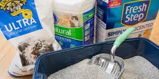 image cat litter. Fine Image The Best Cat Litter And Image