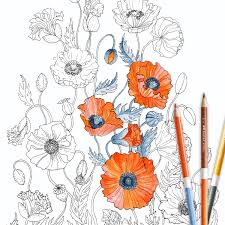 Poppies Coloring Page Instant Download Adult