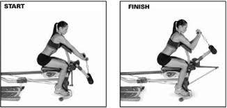 Bowflex Ultimate 2 Exercise Wall Chart 17 Bowflex Pr Workouts Bowflex Ultimate 2 Exercise Wall