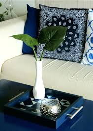 Decorative Trays For Living Room Living In A White Box Tray Chic The Decor Guruhow To Diy Decorative 98