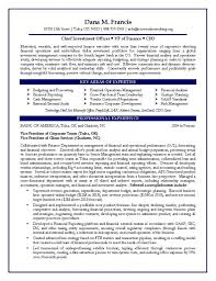 Amazing Resume Template Cfo Sketch Documentation Template