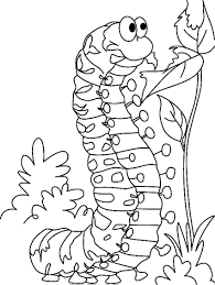 Small Picture Good Caterpillar Coloring Page 13 For Download Coloring Pages with