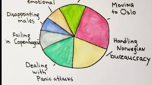 Pie Chart Of Resilience And My Future Self Skillshare Projects