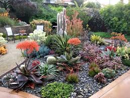 Small Picture Container Succulent Garden Design Garden Ideas Small Succulent
