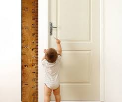 Growth Chart Ruler Decal Wall Growth Chart Ruler
