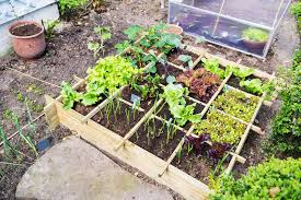 Small Picture Vegetable Container Gardening For Beginners Gardening Ideas