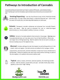 symptoms of over smoking weed